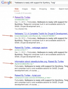 screenshot of Google results for term from WordPress excerpt
